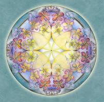 Mandala Art Prints